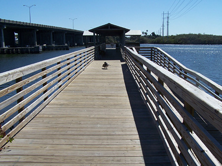 Williams park fishing pier riverview fl for Fishing piers near me